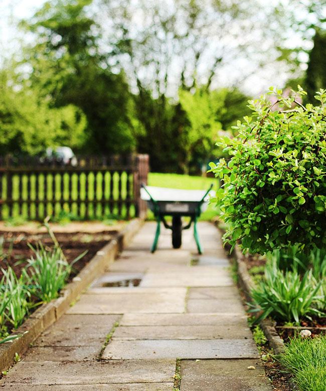 green vision - jardin